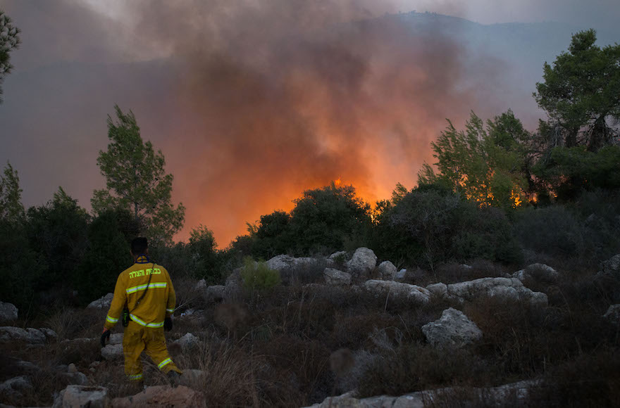 Fire fighters try to extinguish a wildfire which broke out iat the entrance to Nataf, outside of Jerusalem on November 25, 2016. Photo by Yonatan Sindel/Flash90